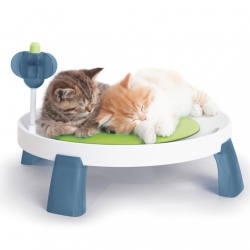 Cama Elevada Cat It